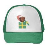 Vizsla Green Gift Box Trucker Hat