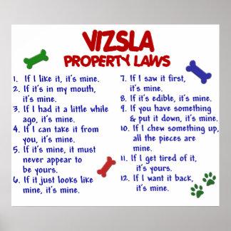 VIZSLA PL2 POSTER