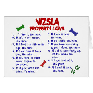 VIZSLA Property Laws 2 Card