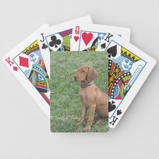 Vizsla Puppy - Bicycle Playing Cards