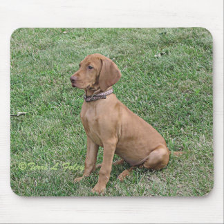 Vizsla Puppy Mouse Pad