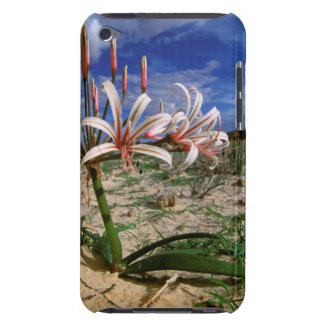 Vlei Lily (Nerine Laticoma) In Flower Barely There iPod Cover