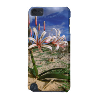 Vlei Lily (Nerine Laticoma) In Flower iPod Touch (5th Generation) Cover
