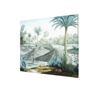 Volcanoes in the region of Turbaco, from 'Vues des Gallery Wrap Canvas