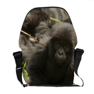 Volcanoes National Park, Mountain Gorilla, baby Messenger Bag