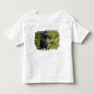 Volcanoes National Park, Mountain Gorilla Toddler T-Shirt
