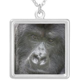 Volcanoes NP, Rwanda, Mountain Gorillas, Silver Plated Necklace