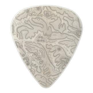 Volcans Haute Loire Acetal Guitar Pick