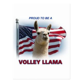 Volley Llama Swagger Postcard