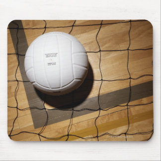 Volleyball and net on hardwood floor of mouse mat