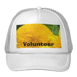 Volunteer hats Yellow Sunflower sports caps hat