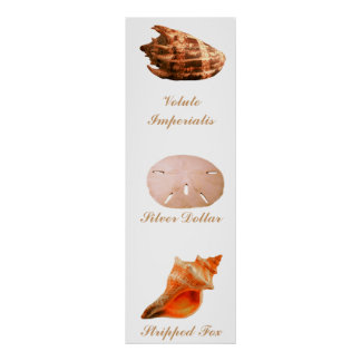 Volute Imperialis Silver Dollar Stripped Fox Poster
