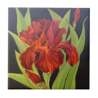 VooDoo Flame Red Iris Small Square Tile