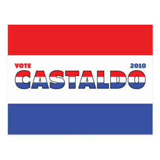 Vote Castaldo 2010 Elections Red White and Blue Postcard