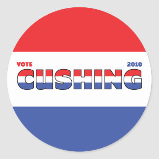 Vote Cushing 2010 Elections Red White and Blue Stickers