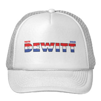 Vote DeWitt 2010 Elections Red White and Blue Hat