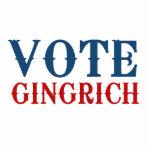 VOTE GINGRICH 2012 PHOTO SCULPTURE