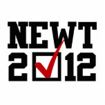 VOTE NEWT GINGRICH 2012 CUT OUT