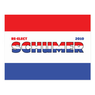 Vote Schumer 2010 Elections Red White and Blue Postcard