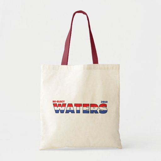 Vote Waters 2010 Elections Red White and Blue Canvas Bag