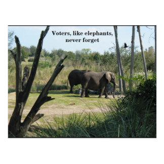 Voters, like elephants, never forget postcard