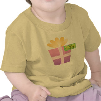 Vovo's Favorite Gift Shirts