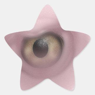 Vulture Eye Star Sticker