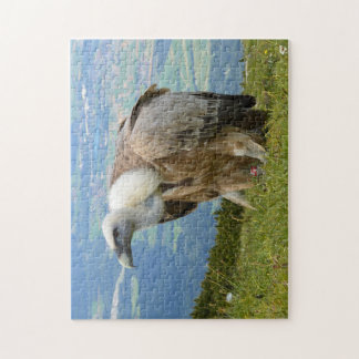 Vulture Jigsaw Puzzle