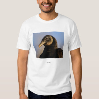 Vulture Tee Shirts