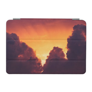 w in weather iPad mini cover