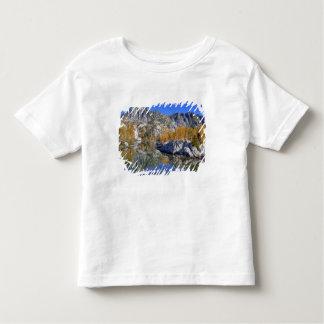 WA, Alpine Lakes Wilderness, Enchantment 7 T Shirt