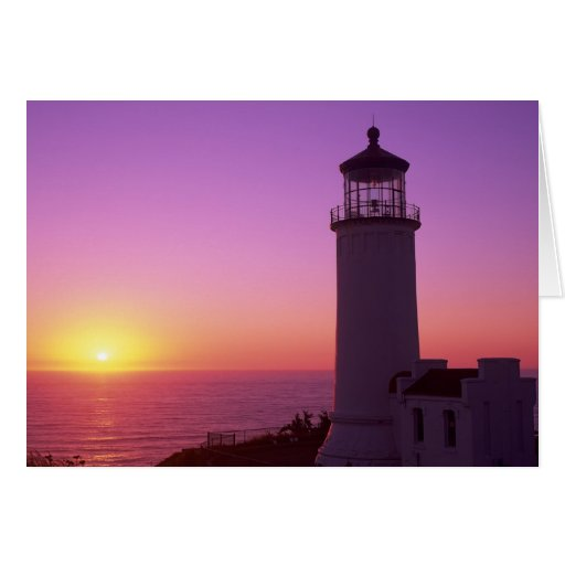 WA, Cape Disappointment State Park, North Head 2 Greeting Card