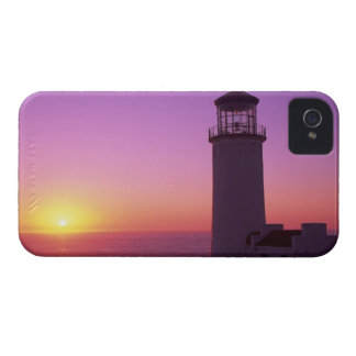 WA, Cape Disappointment State Park, North Head 2 iPhone 4 Case-Mate Cases