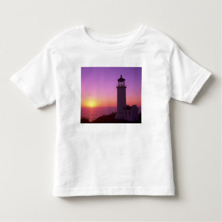 WA, Cape Disappointment State Park, North Head 2 Toddler T-Shirt