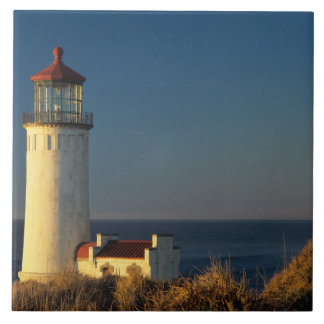 WA, Cape Disappointment State Park, North Head Large Square Tile