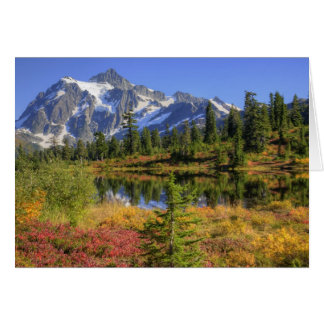WA, Heather Meadows Recreation Area, Mt. 2 Greeting Card