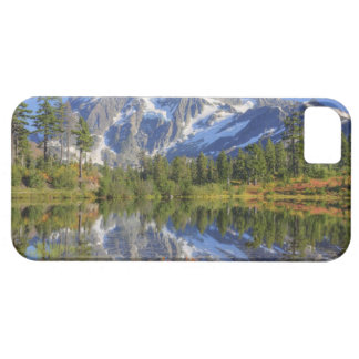 WA, Heather Meadows Recreation Area, Mt. iPhone 5 Cases