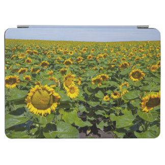 WA, Kittitas County, Sunflower Field iPad Air Cover