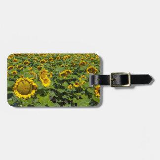 WA, Kittitas County, Sunflower Field Luggage Tag