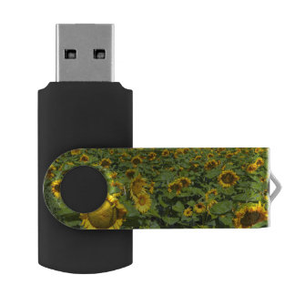 WA, Kittitas County, Sunflower Field Swivel USB 2.0 Flash Drive