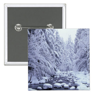 WA, Mount Baker-Snoqualmie National Forest, 15 Cm Square Badge