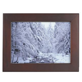 WA, Mount Baker-Snoqualmie National Forest, Keepsake Box