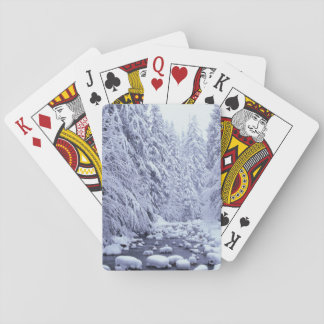 WA, Mount Baker-Snoqualmie National Forest, Playing Cards
