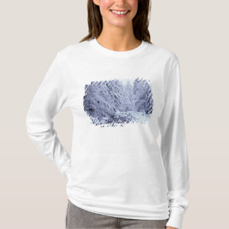 WA, Mount Baker-Snoqualmie National Forest, T-Shirt