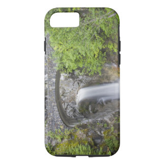 WA, Mount Rainier National Park, Christine Falls iPhone 8/7 Case