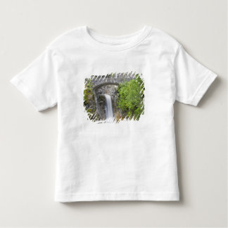 WA, Mount Rainier National Park, Christine Falls Toddler T-Shirt