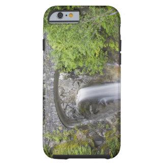 WA, Mount Rainier National Park, Christine Falls Tough iPhone 6 Case