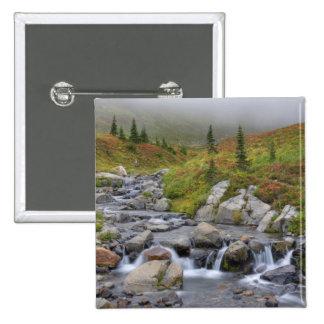 WA, Mt. Rainier National Park, Edith Creek Button