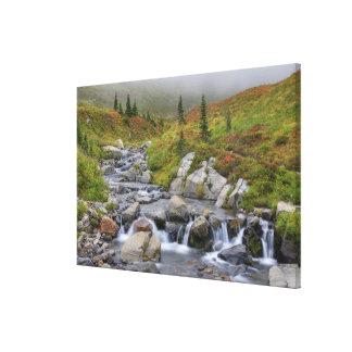 WA, Mt. Rainier National Park, Edith Creek Canvas Print