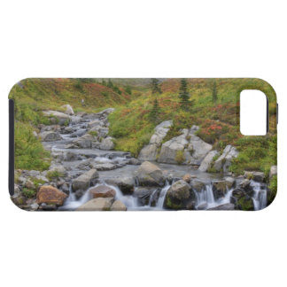 WA, Mt. Rainier National Park, Edith Creek iPhone 5 Case